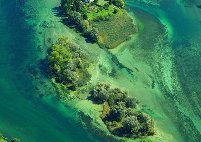 Insel Werd
